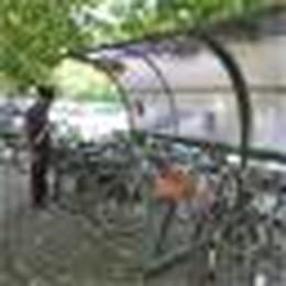 Casale, cicloparcheggio anti furti in stazione