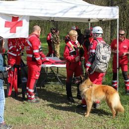 Volontari da tutto il Nord Italia a Spino per entrare nell'unità cinofila della Croce Rossa