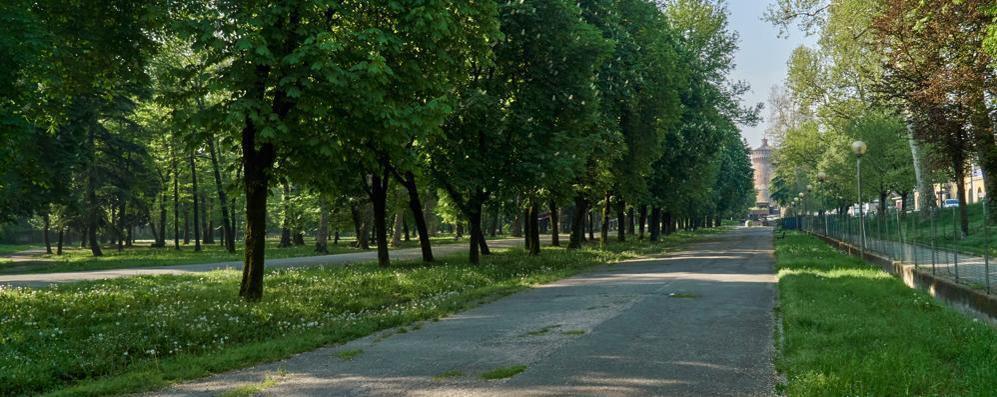 Non snaturiamo questo piccolo Central Park