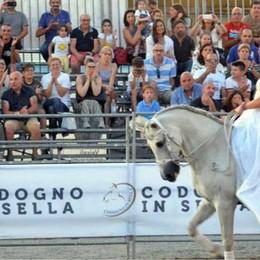 La tre giorni dedicata ai cavalli incanta Codogno
