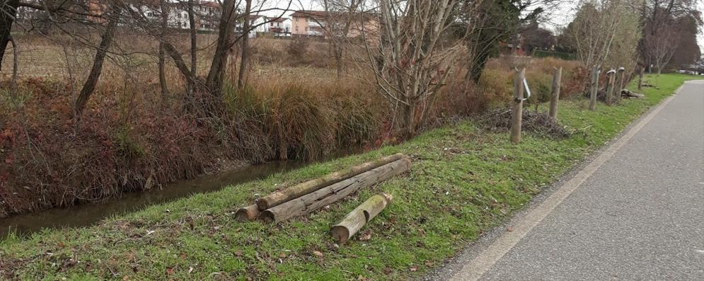 """I """"cannibali"""" dei pali di legno scatenati lungo la ciclabile"""