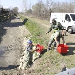 Operazione salvataggio nel fosso prosciugato a Turano