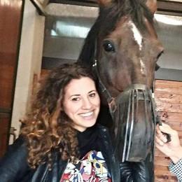 """Varenne, il cavallo della leggenda diventa """"cittadino"""" di Sant'Angelo"""