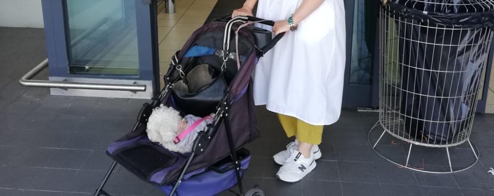 Non la fanno entrare al market con il cane: due ore di protesta a Codogno