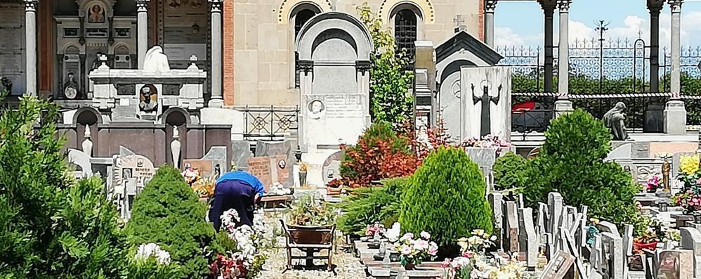 Lodi, maxi appalto per i cimiteri: Il Broletto cerca gestori privati