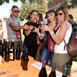 San Colombano: festa dell'uva rimandata