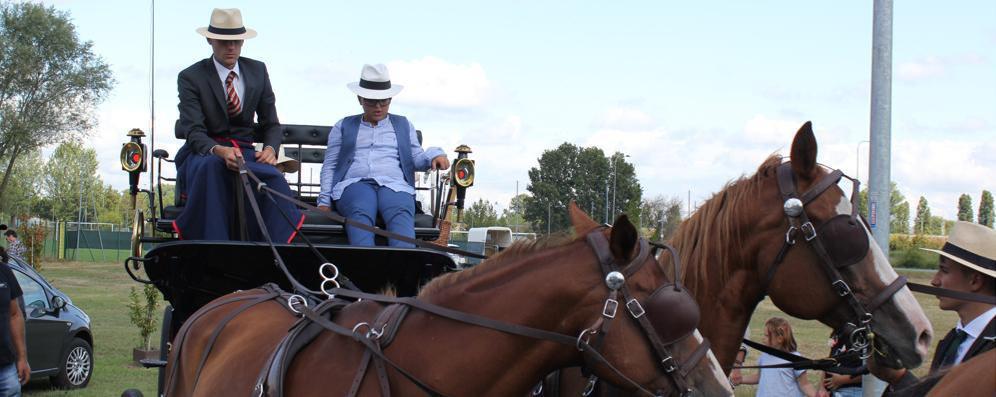 Carrozze e cavalli in memoria di Altea