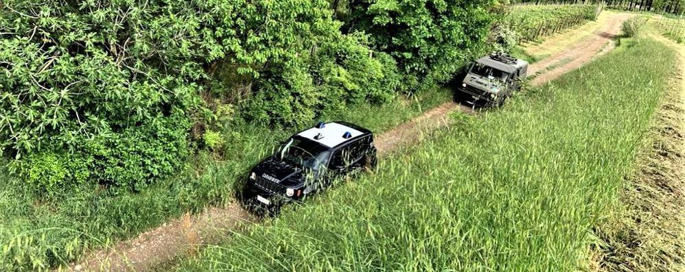 SAN COLOMBANO Droga in collina, riprendono i traffici degli spacciatori VIDEO