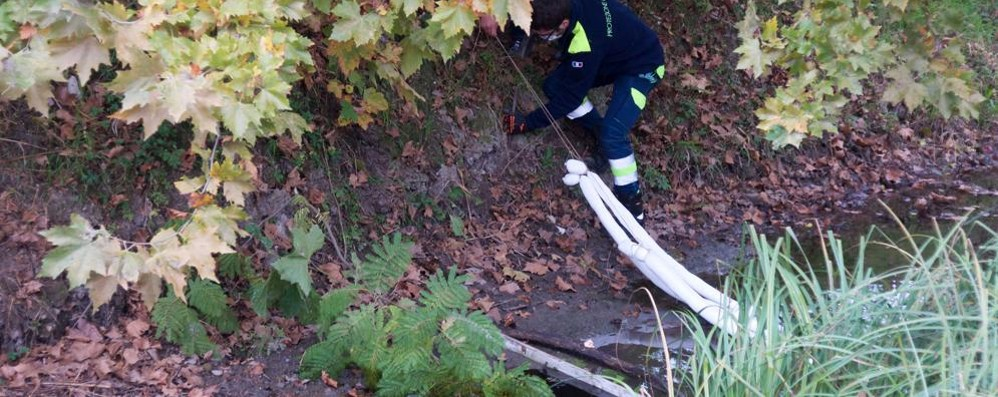 LODI VECCHIO Maxi sversamento di idrocarburi nel Silaretto