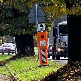 Tra Melegnano e Riozzo  un autovelox in mezzo agli alberi della Santangiolina