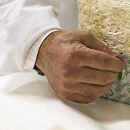 CASALE Gorgonzola Croce, da 140 anni sulle tavole di mezzo mondo