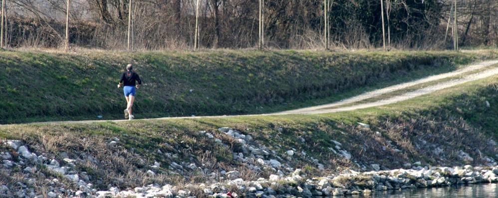 Cervignano: morsicato da due cani mentre passeggia, ora sporge denuncia