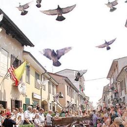 Sant'Angelo, cercasi casa per le colombe di Santa Cabrini