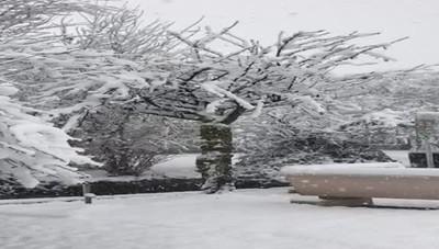 La neve alla Muzza