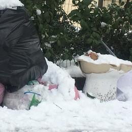 Topi e rifiuti sul marciapiede, in viale Maccacaro a Codogno non se ne può più