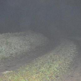 Sulle strade di campagna per trovare tracce del lupo