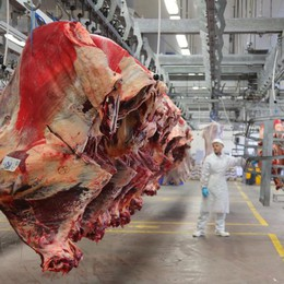 Maxi logistica della carne, Cremonini investe ancora