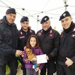 I cioccolatini di Viola per i carabinieri dei check point