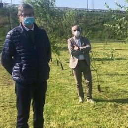 """LODI - Una """"barriera verde"""" a San Grato: piantati 130 alberi ai pozzi di Sal"""