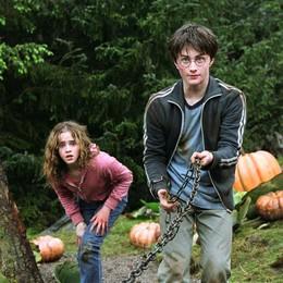 Dalla burrobirra ai dolcetti stregati: in cucina con Harry Potter