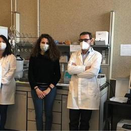 Il coronavirus nei cani e nei gatti: parte uno studio al Parco tecnologico di Lodi