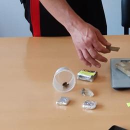 Tre sequestri di droga in due giorni: i carabinieri arrestano un 48enne e denunciano un 26enne