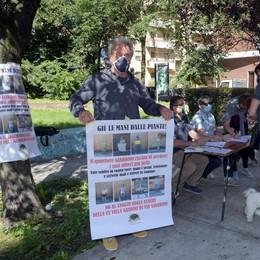Melegnano, subito 100 firme per salvare gli alberi di villa Gandini GUARDA IL VIDEO
