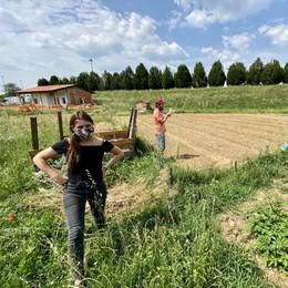 SanfereOrto, là dove c'era l'erba e i campi danno ancora frutti: «Una risorsa della comunità». VIDEO