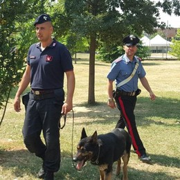 Lodi, i carabinieri passano al setaccio i parchi