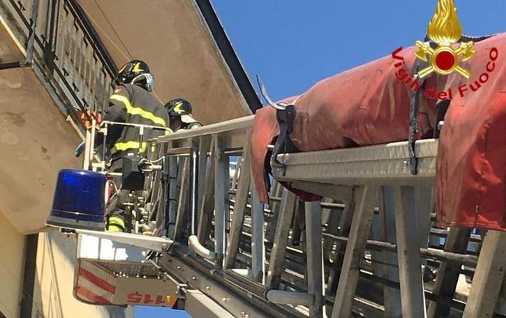 Pomeriggio di incendi, due interventi dei vigili del fuoco