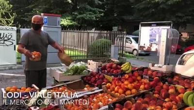 Viaggio al mercato di San Bernardo
