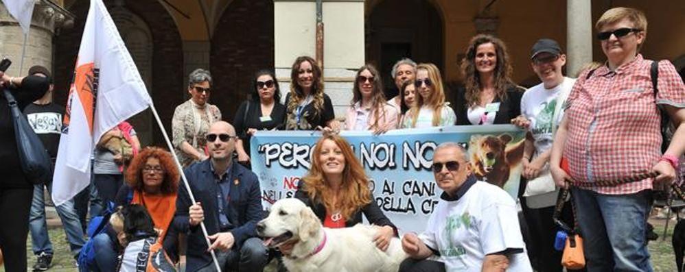 «Cani nei parchi a Lodi, ora i cittadini facciano la loro parte»