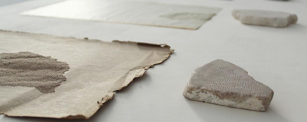 La luce che attraversa la materia: l'indagine sull'arte di Diana Poput