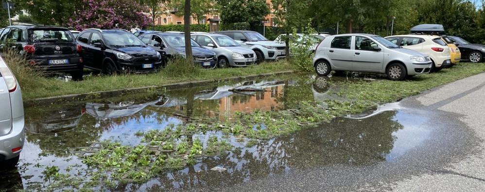 LODI Il parcheggio come una piscina: sosta difficile fuori dal Maggiore