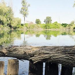 La lanca di Soltarico ha bisogno di cure: il piano del Parco Adda
