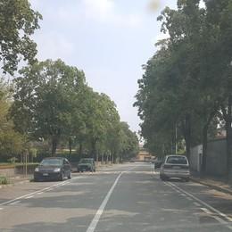 Gare proibite tra automobili intorno al parco San Tarcisio