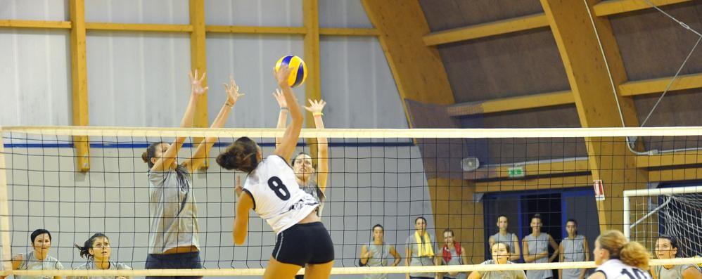 Volley, Tomolpack story-3: lo sguardo verso l'alto