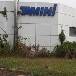 «La Lidl vuole trasferirsi nella storica fabbrica Tamini di Melegnano»