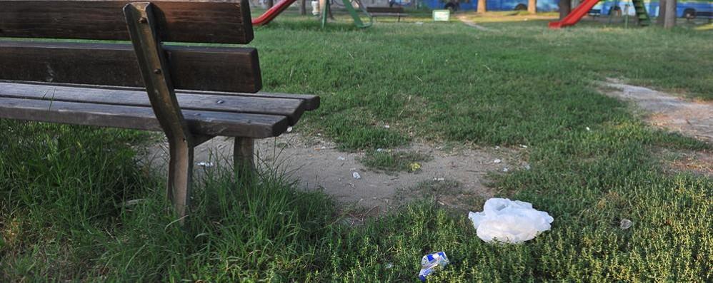Nel parco di via Fascetti a Lodi, tra il degrado e le siringhe