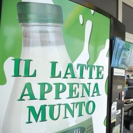 """SAN COLOMBANO I vandali """"affamati"""" continuano a razziare i distributori di latte e formaggi"""