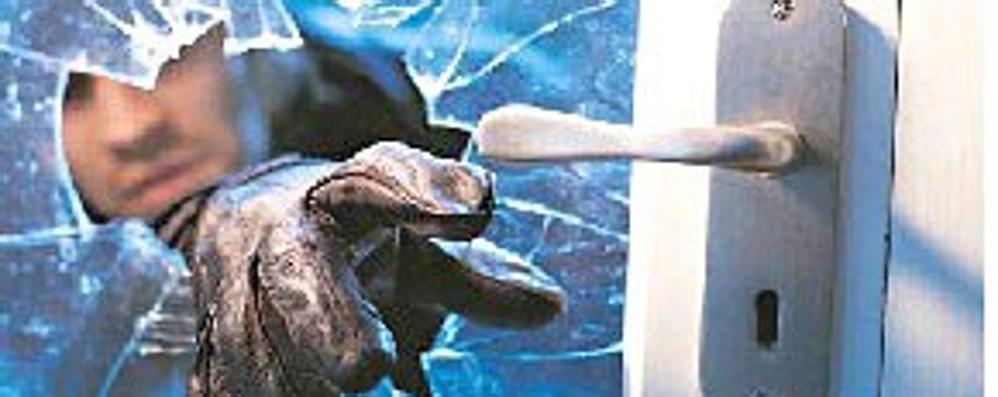 Topi d'appartamento scatenati, ma a Somaglia vengono messi in fuga da un vicino