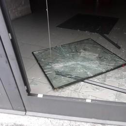 MELEGNANO Torna in azione la banda dei negozi: un'altra vetrina in frantumi