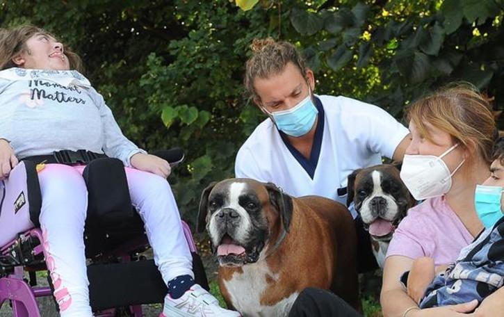 LE BUONE NOTIZIE È con tre boxer al fianco dei disabili che la vita si fa un po' più facile. Guarda il video
