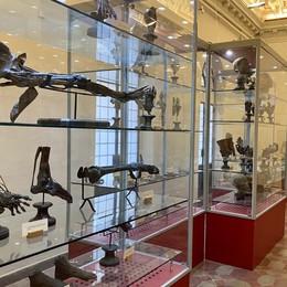 Lodi, al via il restauro della collezione anatomica Paolo Gorini