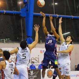 Basket, l'Assigeco a caccia di un difficile bis con Tortona