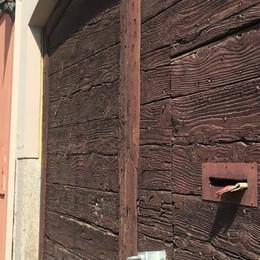 Codogno, operazione immobiliare sulla storica sede del Pci «ma l'avevano pagata gli iscritti»