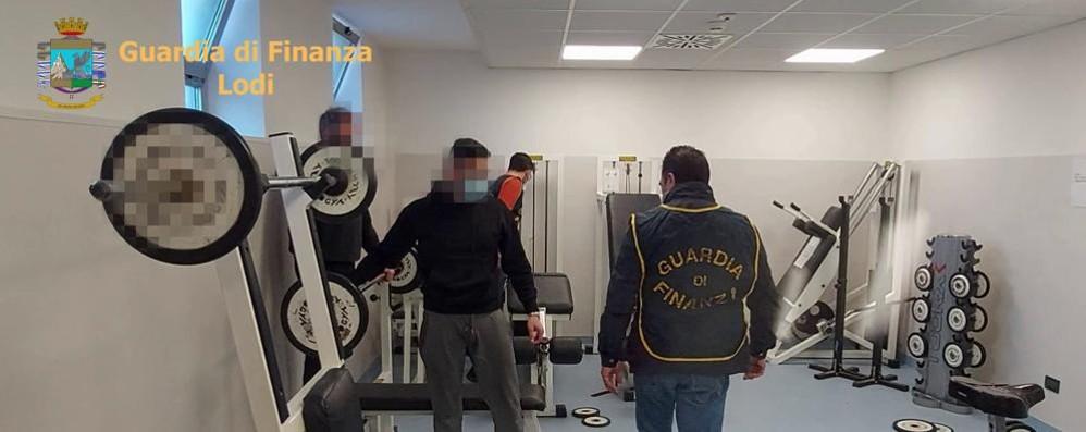 Doping nelle palestre, la Finanza di Lodi scopre un traffico illecito di farmaci VIDEO