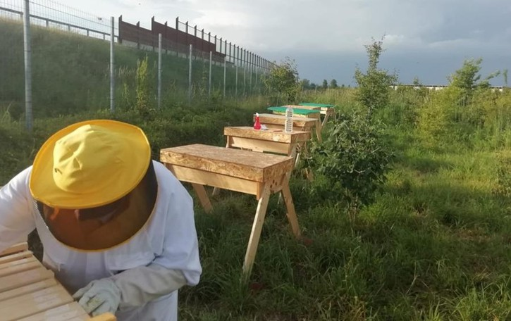 Lodi, il corso è un successo: tutti pazzi per il miele fatto in casa