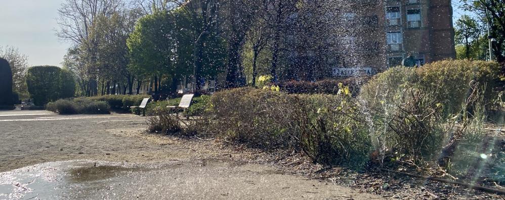 Lodi, nei giardini Barbarossa i problemi di sempre
