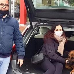 SAN GIULIANO Il cane scompare a dicembre e riappare in un campo nomadi